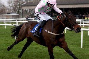 Supreme Novices Hurdle: Join Ladbrokes for 50/1 on Getabird